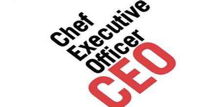 Resume examples for chief operating officer